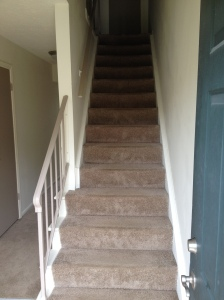 That's all of the rooms downstairs. So up the stairs we go!