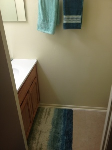 The rug and hand towels in the half bath.
